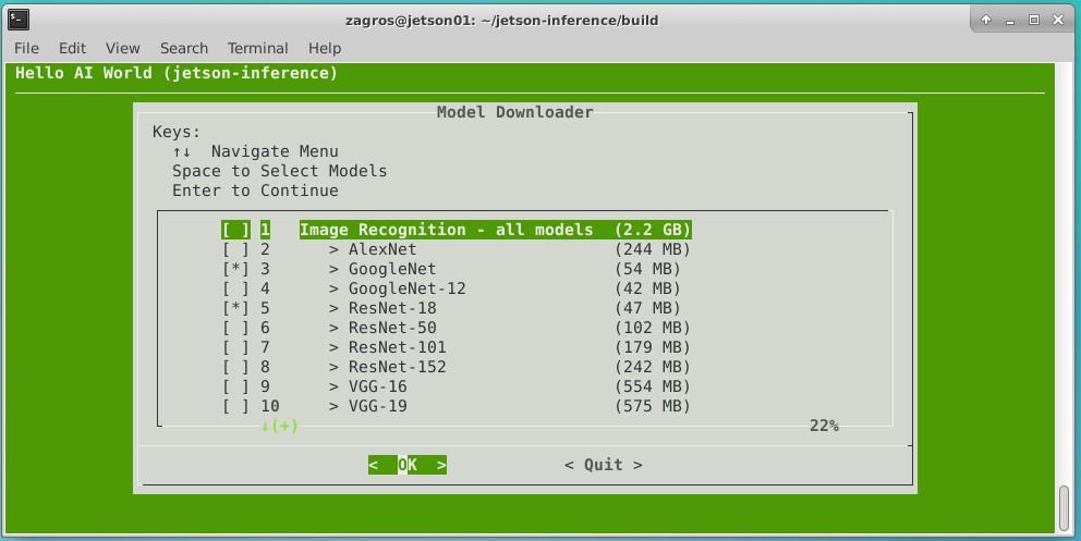 Jetson Nano Hello World model selection