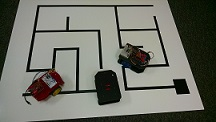 Group of Maze Solving Robots